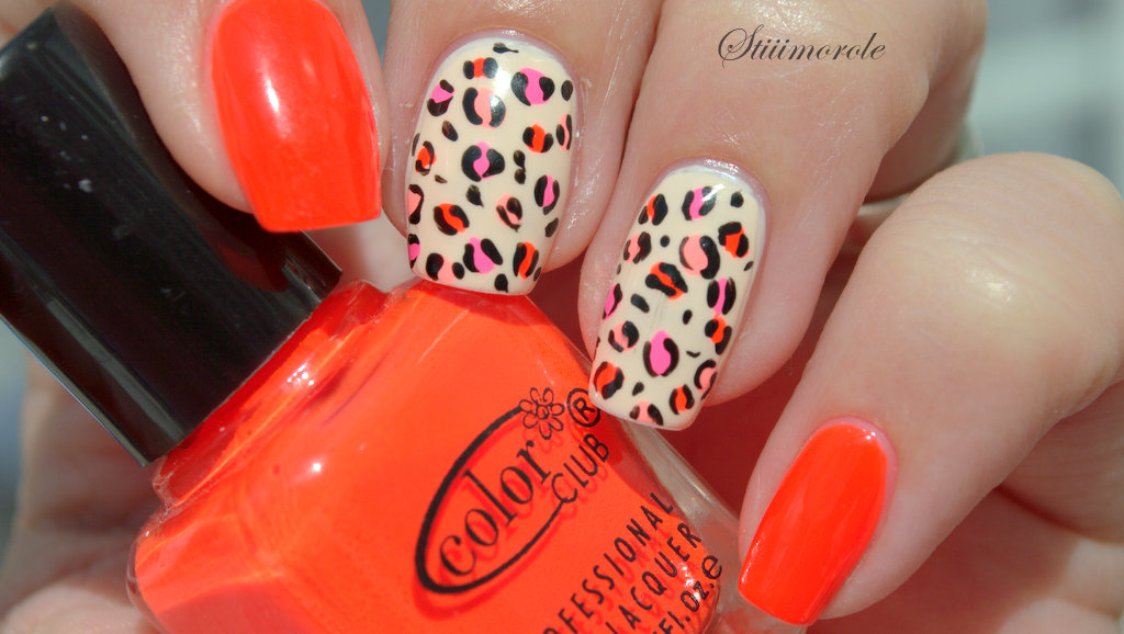 leopard color club (2)
