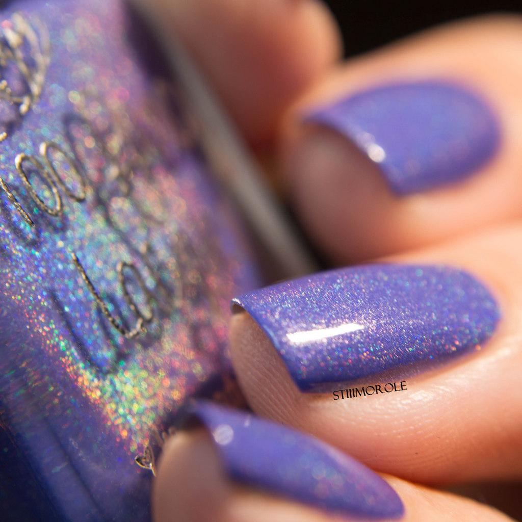 1-TFL - Shrinking violet 4