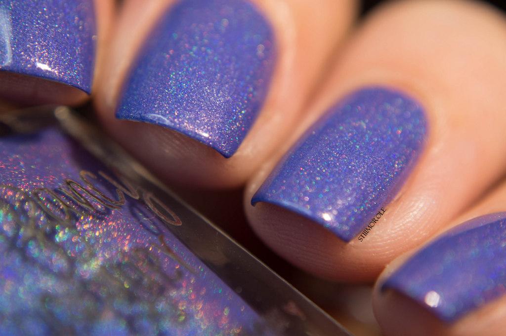 1-TFL - Shrinking violet 7